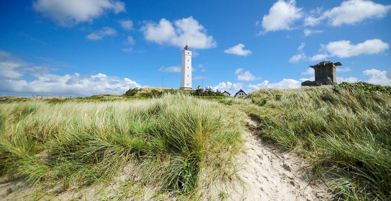 blavand in Dänemark