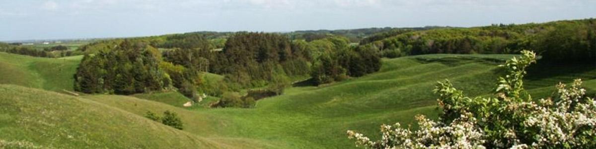 Hirtshals – Mygdal – Tornby (44 km)
